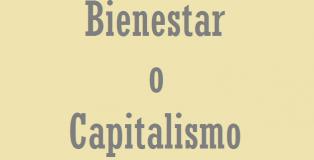 capitalismo bienestar