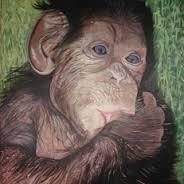 mono chupa dedo